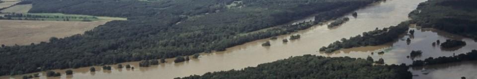 Deichrückverlegung im Bereich Lödderitzer Forst im Rahmen des Naturschutzgroßprojektes Mittlere Elbe